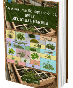 80 Square Feet Garden of Medicine